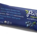 Pure Organic Wild Blueberry Fruit & Nut Bar